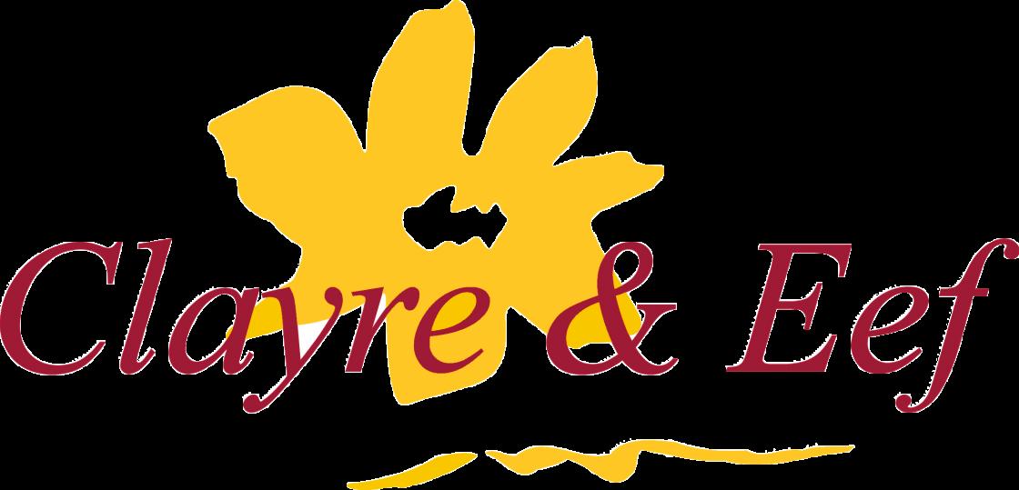 Clayre & Eef kussens logo